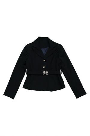 Пиджак Pinetti. Цвет: синий