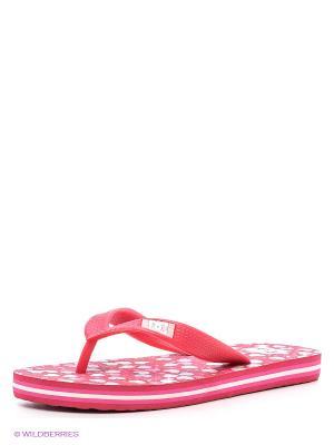 Шлепанцы SPRAY GRAFFIK B SNDL DC Shoes. Цвет: розовый