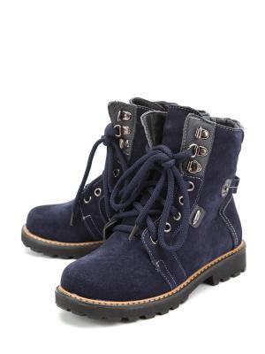 Ботинки Flois. Цвет: синий