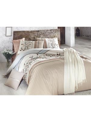 Комплект постельного белья PASTELLA КПБ Молочно-бежевый, ранфорс, 145ТС, 100% хлопок, евро ISSIMO Home. Цвет: бежевый