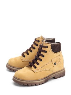 Ботинки PAVLE. Цвет: желтый
