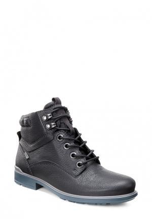 Ботинки COHEN ECCO. Цвет: черный