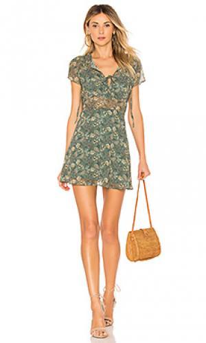 Платье phyly Line & Dot. Цвет: зеленый