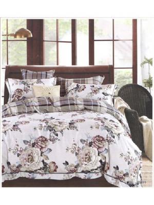 Комплект постельного белья ROMEO AND JULIET. Цвет: темно-коричневый, серый