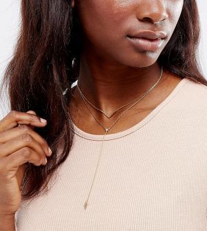 Orelia Ярусное ожерелье-чокер. Цвет: золотой