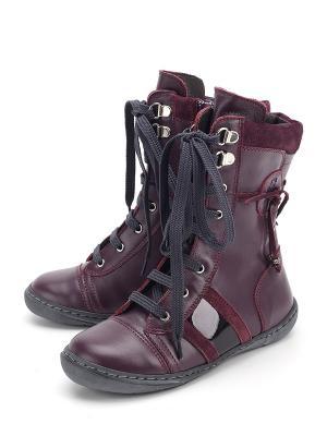 Ботинки PAVLE. Цвет: бордовый