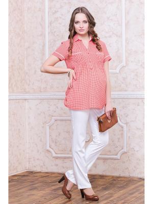 Блуза для беременных Gebbe. Цвет: коралловый