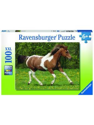 Пазл Пегий конь XXL 100 шт Ravensburger. Цвет: зеленый