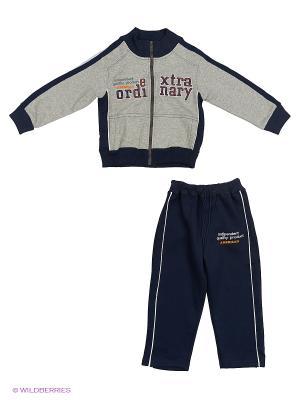 Спортивный костюм DAMY-M. Цвет: серый
