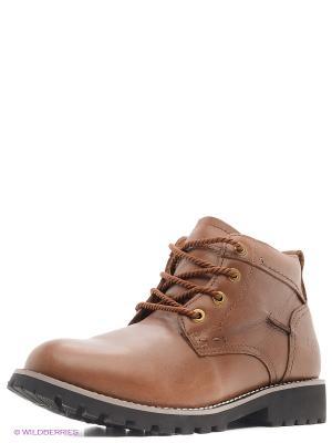 Ботинки Shoiberg. Цвет: темно-коричневый, бледно-розовый