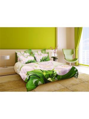 Постельное белье Belie Tulpani 2,0 сп. Buenas Noches. Цвет: белый, зеленый