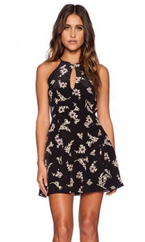Мини платье violet Myne. Цвет: черный