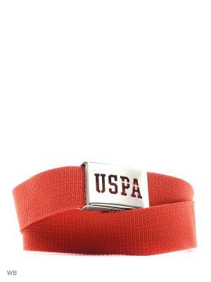 Ремень U.S. Polo Assn.. Цвет: красный