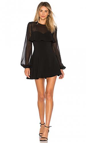 Мини платье newport Privacy Please. Цвет: черный