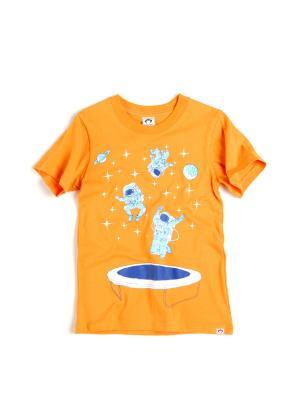 Футболка Appaman. Цвет: оранжевый
