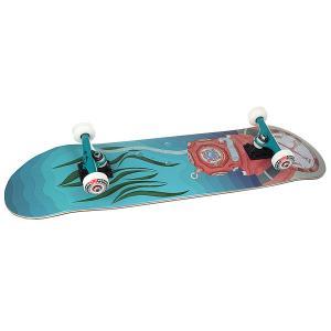 Скейтборд в сборе  Vodolaz Light Blue 32 x 8.125 (20.6 см) Nord. Цвет: голубой,красный