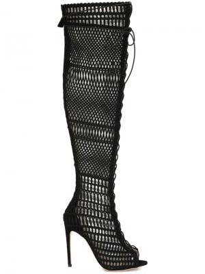 Сетчатые сапоги Giambattista Valli. Цвет: чёрный