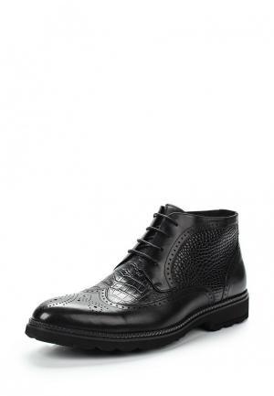Ботинки Guido Grozzi. Цвет: черный