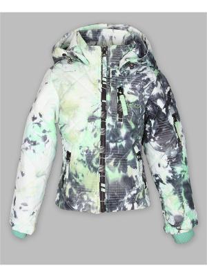Куртка Arista. Цвет: серо-зеленый