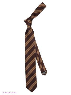 Галстук Alex DANDY. Цвет: коричневый, светло-коричневый, темно-коричневый, терракотовый