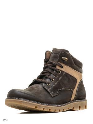 Ботинки Hardline. Цвет: коричневый