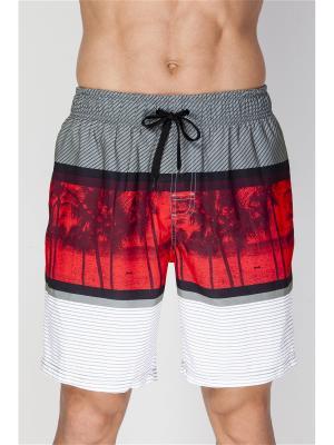 Шорты пляжные мужски TORRO. Цвет: серый