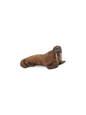 Морж L Collecta. Цвет: коричневый