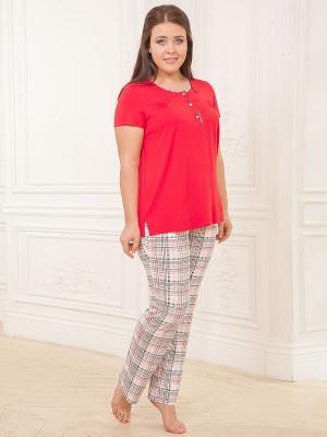 Комплект одежды CLEO. Цвет: красный, бежевый