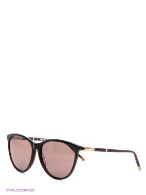 Очки солнцезащитные BLD 1516 104 Baldinini. Цвет: коричневый