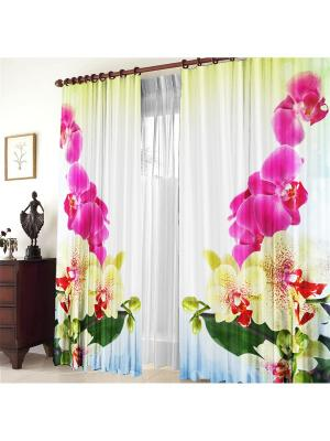 Комплект фотоштор Тигровая орхидея ZLATA KORUNKA. Цвет: розовый