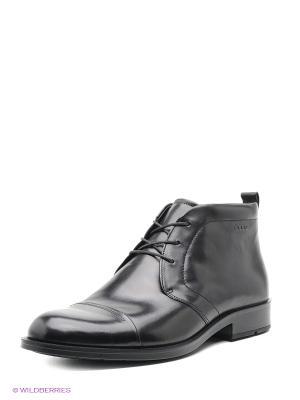 Ботинки ECCO. Цвет: антрацитовый, черный