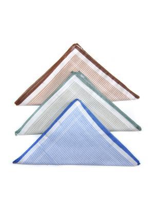 Носовой платок, 3 шт Lola. Цвет: серый, голубой, коричневый
