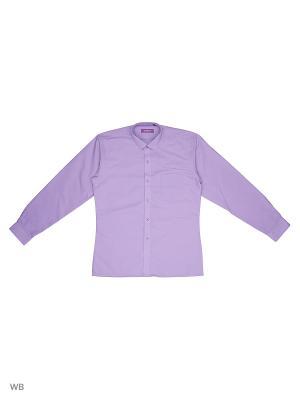 Рубашка CARAT.. Цвет: фиолетовый