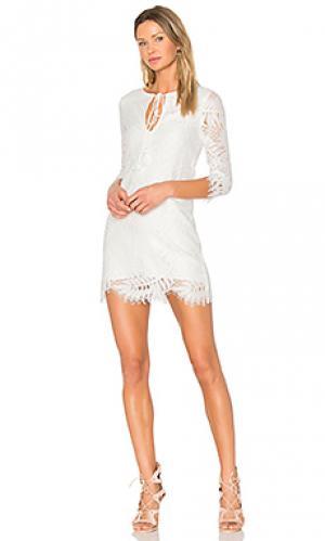 Мини платье marlie Lovers + Friends. Цвет: белый