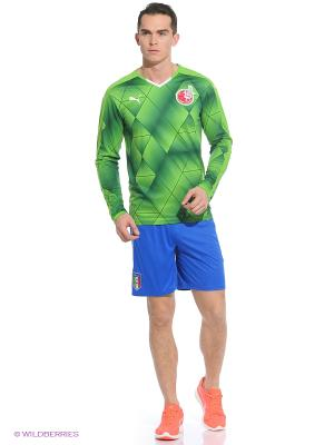 Лонгслив FC Rubin KA3AHb Away LSShirt Puma. Цвет: зеленый