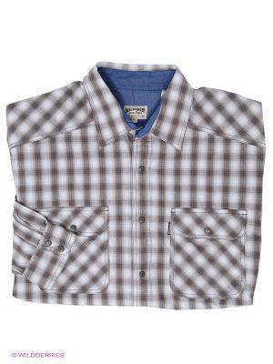 Рубашка Westrenger. Цвет: серо-коричневый