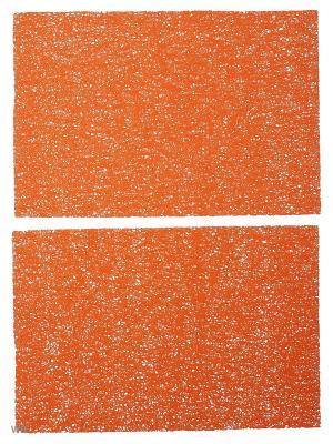 Набор плейсматов, дизайн Паутинка, прямоугольник 45х30 - 2 шт., ПВХ Dorothy's Нome. Цвет: оранжевый