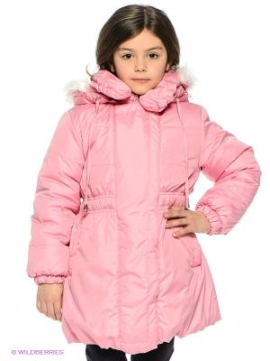 Куртка Avanti Piccolo. Цвет: розовый