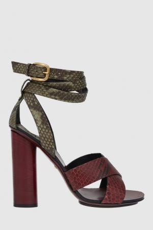 Кожаные сандалии Gucci. Цвет: зеленый, красный