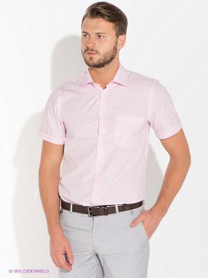 Рубашка Bazioni. Цвет: розовый