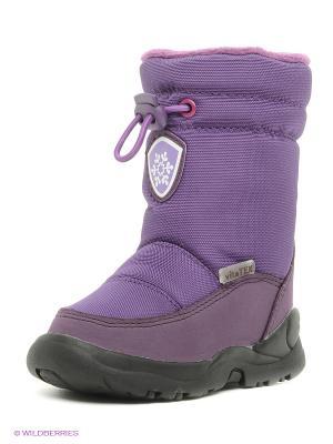 Сапоги Vitacci. Цвет: фиолетовый