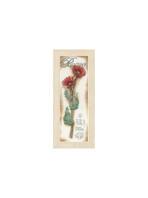 Набор для вышивания Red Poppies /Красные маки/ 20*63см Vervaco. Цвет: коричневый, зеленый, красный