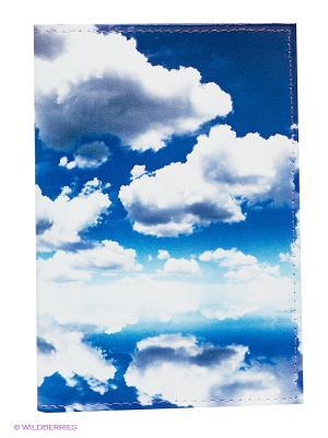 Обложка для паспорта Mitya Veselkov. Цвет: белый, синий, голубой