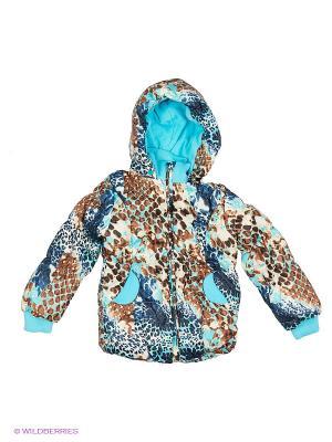 Куртка PELICAN. Цвет: голубой, светло-коричневый