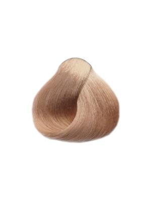 Black sintesis colore creme крем краска для волос 9.17 Светлый блондин пепельный. Цвет: черный