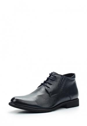 Ботинки классические Dino Ricci Select. Цвет: синий