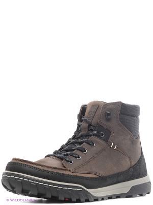 Спортивные ботинки ECCO. Цвет: черный, темно-коричневый