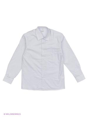 Рубашка Cleverly. Цвет: белый, серый