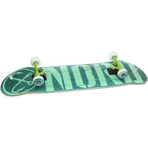 Скейтборд в сборе  Лого Green/Mint/Color Trucks 32 x 8.25 (21 см) Nord. Цвет: зеленый