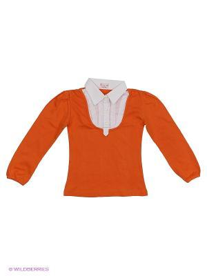 Блузка DAMY-M. Цвет: оранжевый